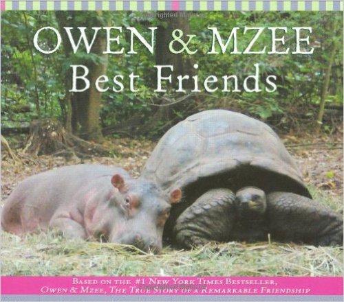 owen-mzee